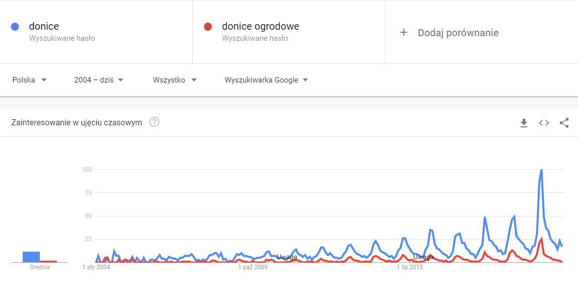 screen z google trends z frazami donice i donice ogrodowe