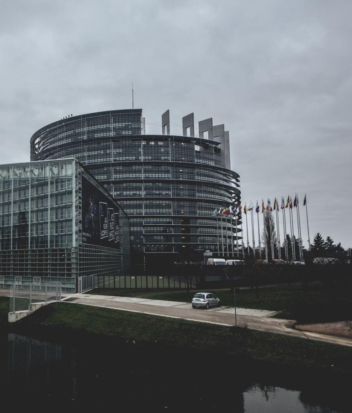 ACTA 2 - zmiany w pozycjonowaniu? - SEO blog